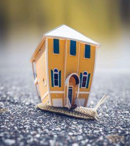 plaatje van een slak met een woonhuis als slakkenhuis